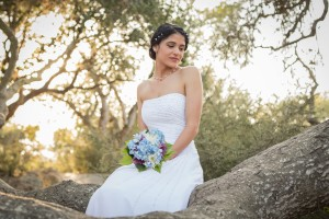 Santa Barbara Weddings Elings Park Fine Heart Photography elope planning wedding