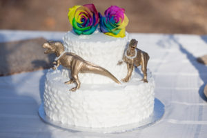 gay wedding photographer santa barbara