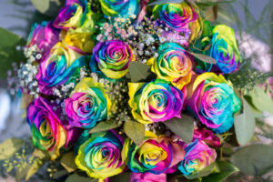 Gay Wedding Photographer Santa Barbara Rainbow Roses