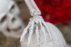 Santa Barbara Halloween Photography Theme Wedding